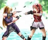 Sakura vs. Ino.jpg